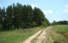 krajobrazy gminy 2007 082