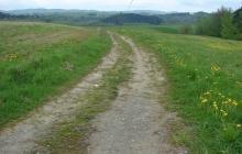 Droga do gruntów rolnych w Rzepienniku Biskupim