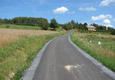 Droga Olszyny w kierunku p. Gotfryda