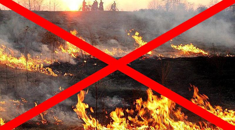 Apel o niewypalanie traw na łąkach i nieużytkach