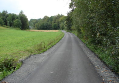 Droga Rzep. Suchy koło pomnika