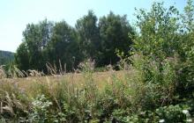 krajobrazy gminy 2007 051