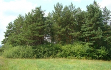 krajobrazy gminy 2007 083