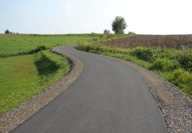 Droga w Rzepienniku Strzyżewskim